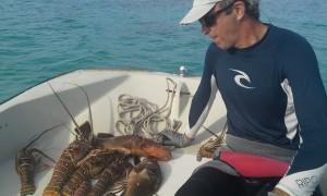 Bahama Lobsters